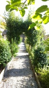 Herb lined pathways